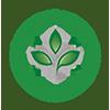 logo verde site ch